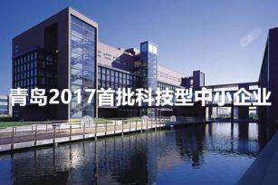 青岛市2017首批拟入库科技型中小企业名单公布,赢信慧通榜上有名